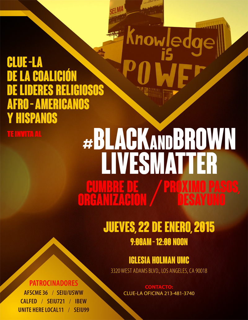 Black&Brown Lives Matter Summit