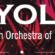 icyola-header