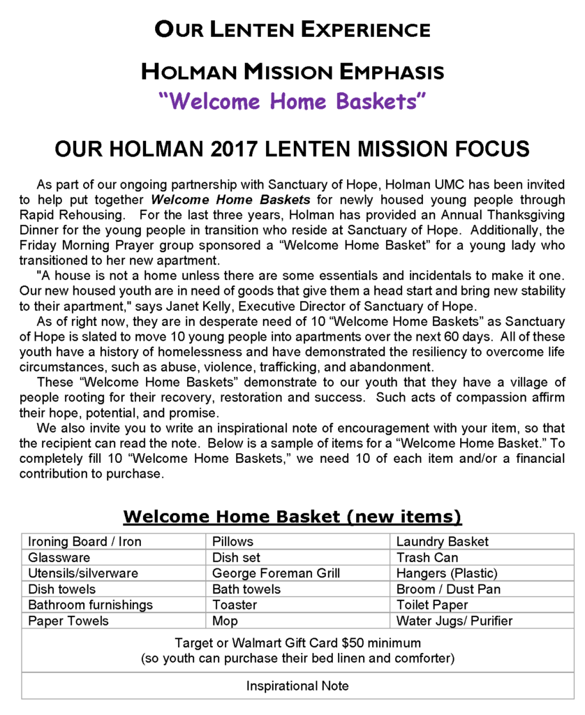 Holman - 2017 Mission Project